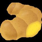 タイショウガでケトン体ダイエット-新ダイエット食品を特許情報から提唱する【特許コラム】